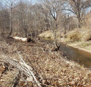 bank of oak creek